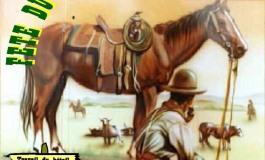 Fête du cheval western - Saint Leon sur Isle (24) - 29 / 30 juin 2013