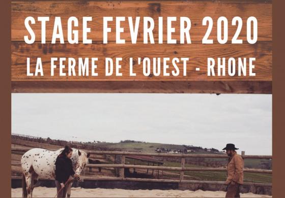 A la découverte des chevaux avec Luc Parisis