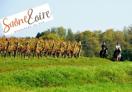 A cheval par les routes de Bourgogne