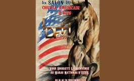 Les chevaux western confirment leur RV d'Uzès (Gard)