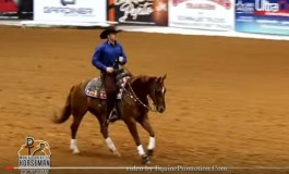 Reined cow horse : the World Greatest Horseman is Clayton Edsall