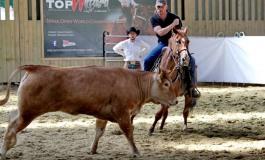 Le Pin (77) - Parc Equestre Francilien - 14 et 15 juin 2014 - CCHA Shoot-Out