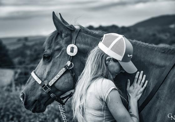 Ostéopathie vétérinaire, option western…