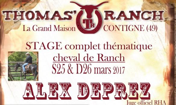 A la découverte du cheval de ranch à Contigné (49) avec Alex Deprez les 25 et 26 mars 2017