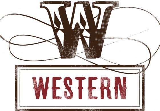6 juin 2015 : Western Shop (Rhône) fait la fête !